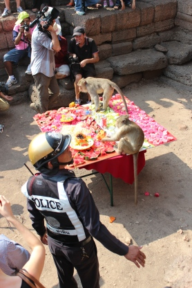 The monkeys had their own personal police guard