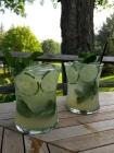 VT gin, summer fabulous